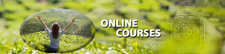 Anodea-Banner-Green-courses